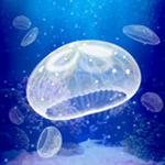 治愈系海蜇养成游戏